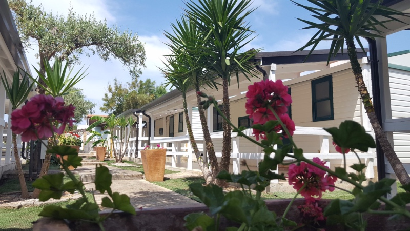 small image Camping Residence Il Faro